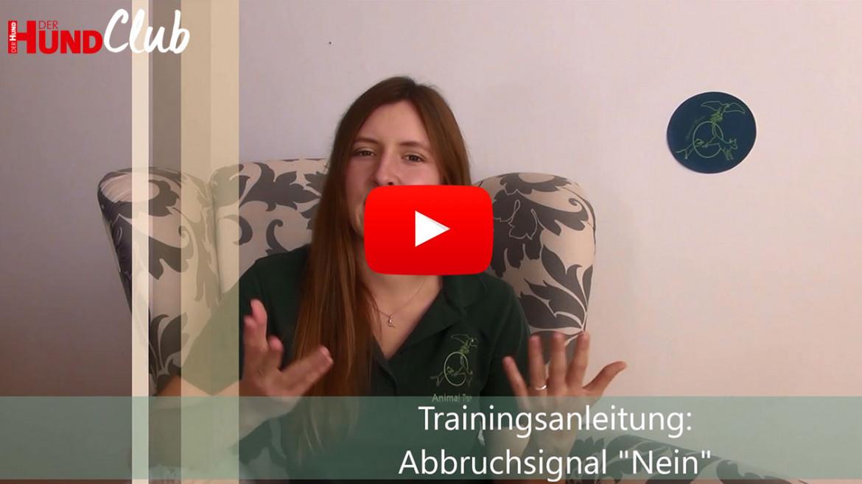 """Das """"Nein"""" einführen – mit Sarah Unterberger (Lehner)"""