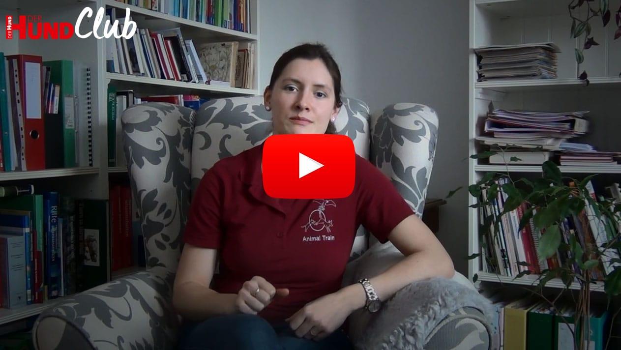Das Auflösesignal einführen – mit Sarah Lehner