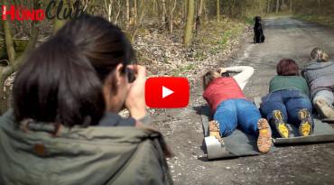 Hunde fotografieren: die Blende der Kamera – mit Regine Heuser