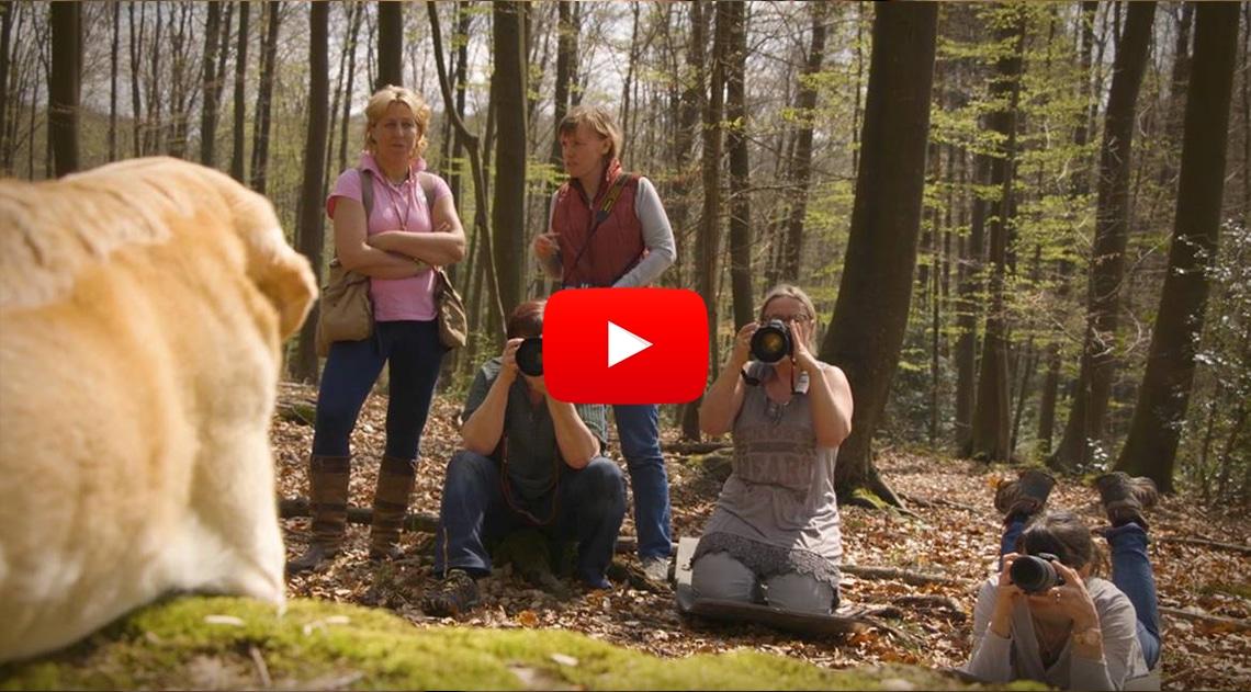Hunde fotografieren: die Verschlusszeit der Kamera – mit Regine Heuser