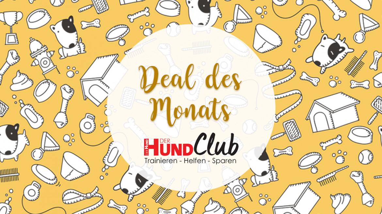 Deal des Monats – 50 % Rabatt bei Lieblingbox