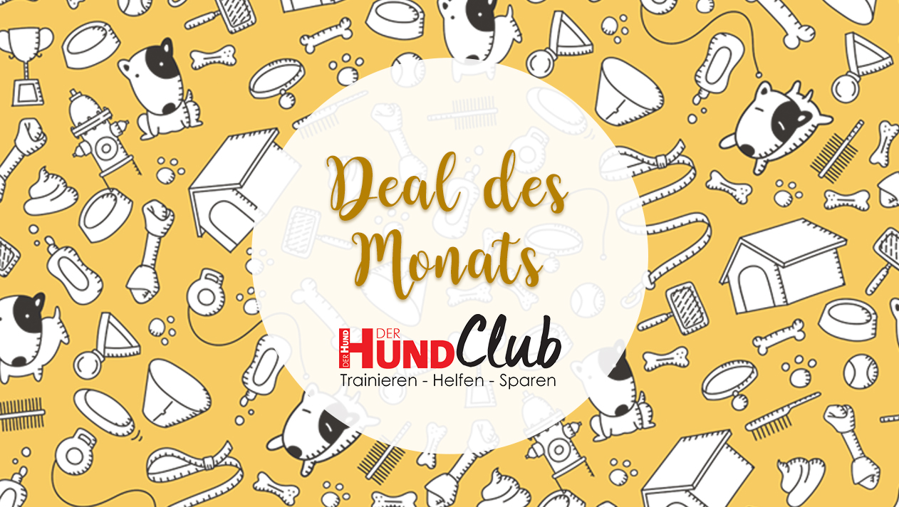 Deal des Monats – Weiterleitung jeden Monat neu einrichten