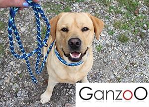 GanzoO - Halsbänder & Leinen aus Paracord