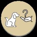 Icon_Expertenwissen_rund