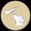 Icon_Training_rund