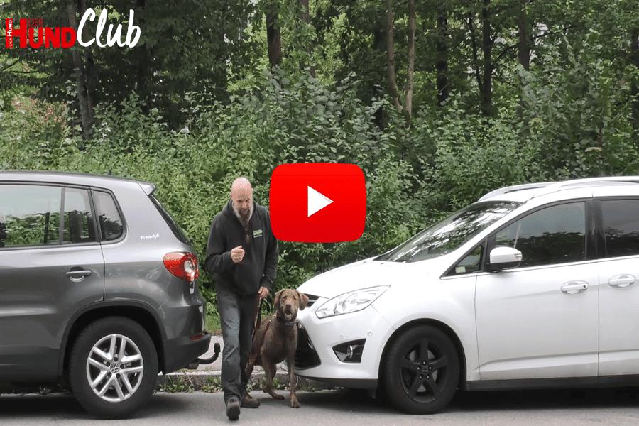 Sicherheit im Straßenverkehr – mit Holger Schüler