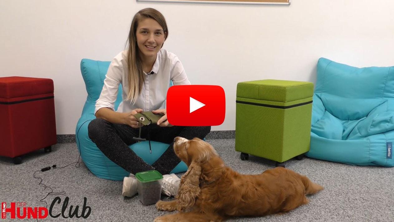 Training mit einem Futterdummy – mit Veronika Rothe
