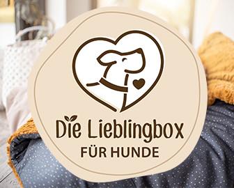Die Lieblingsbox für Hunde