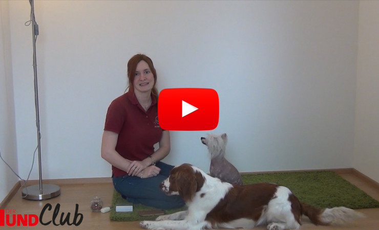 Bellen auf Kommando – mit Sarah Unterberger (Lehner)