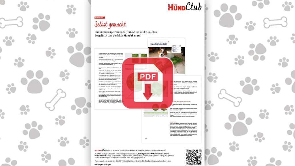 Download: Für Genießer: Hundekissen selber machen