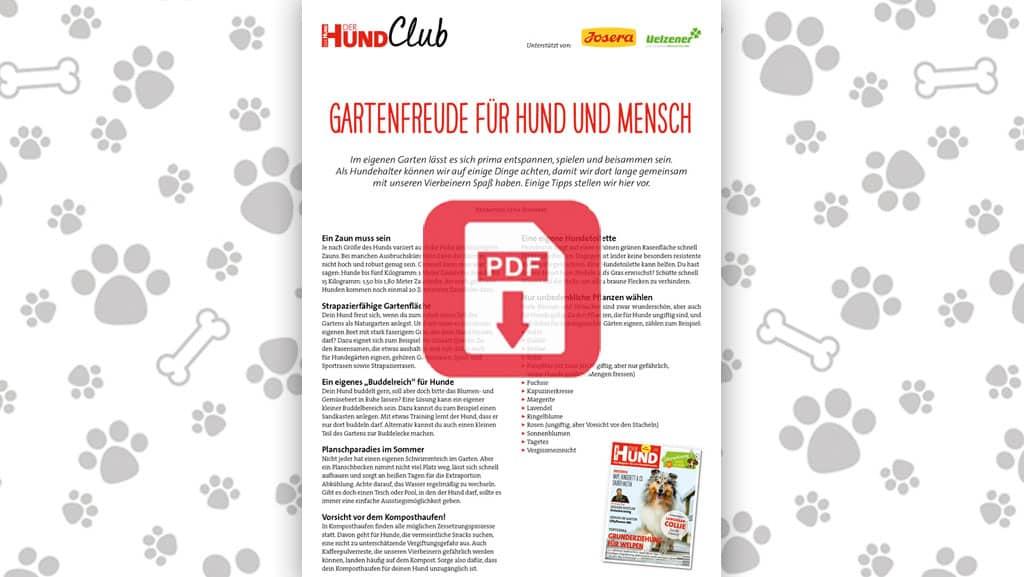 Download: Gartenfreude für Hund und Mensch