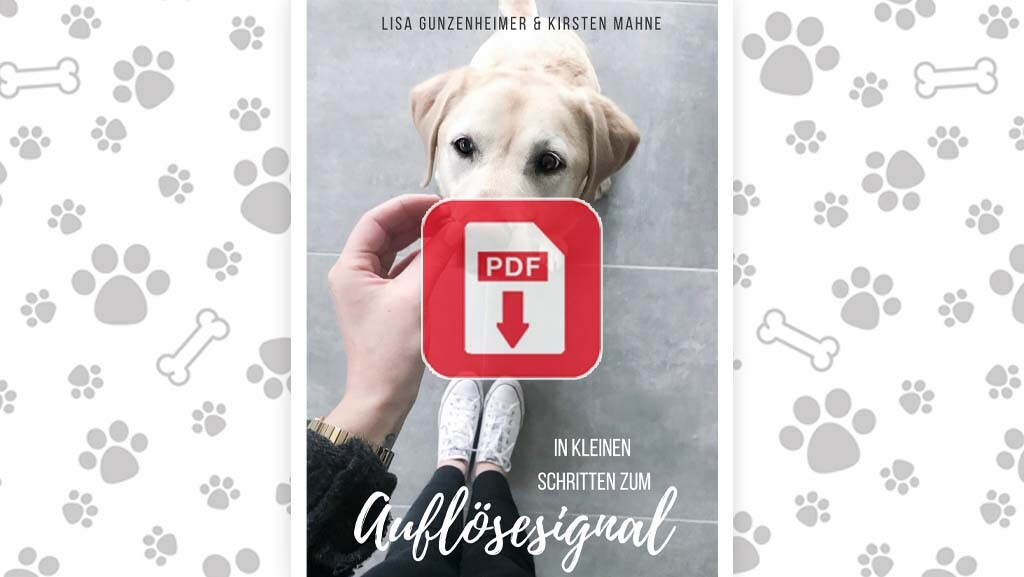 Download: Mini eBook zum Auflösesignal
