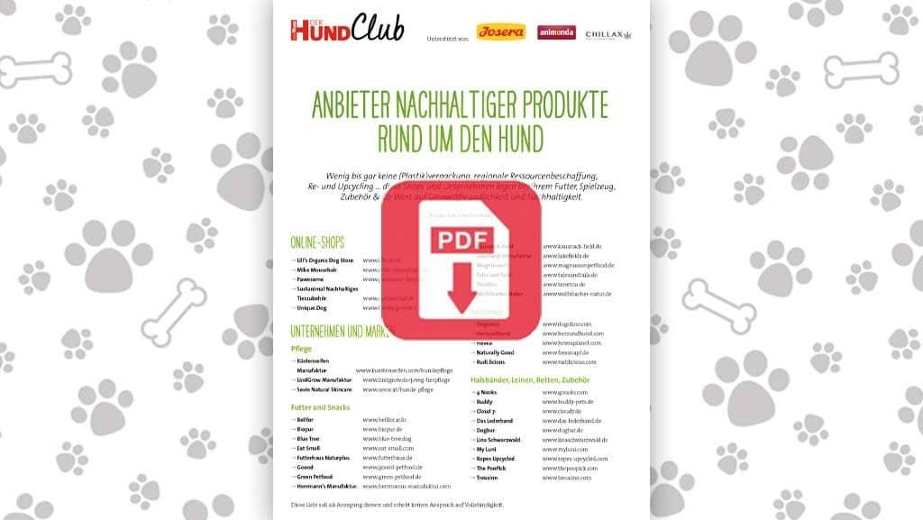 Download: Anbieter nachhaltiger Produkte rund um den Hund