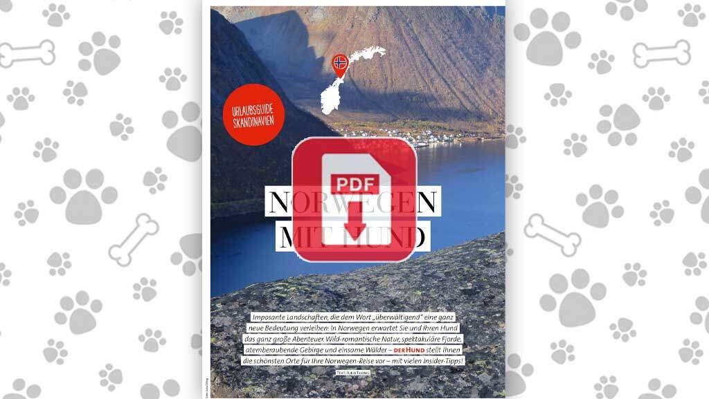 Download: Norwegen mit Hund