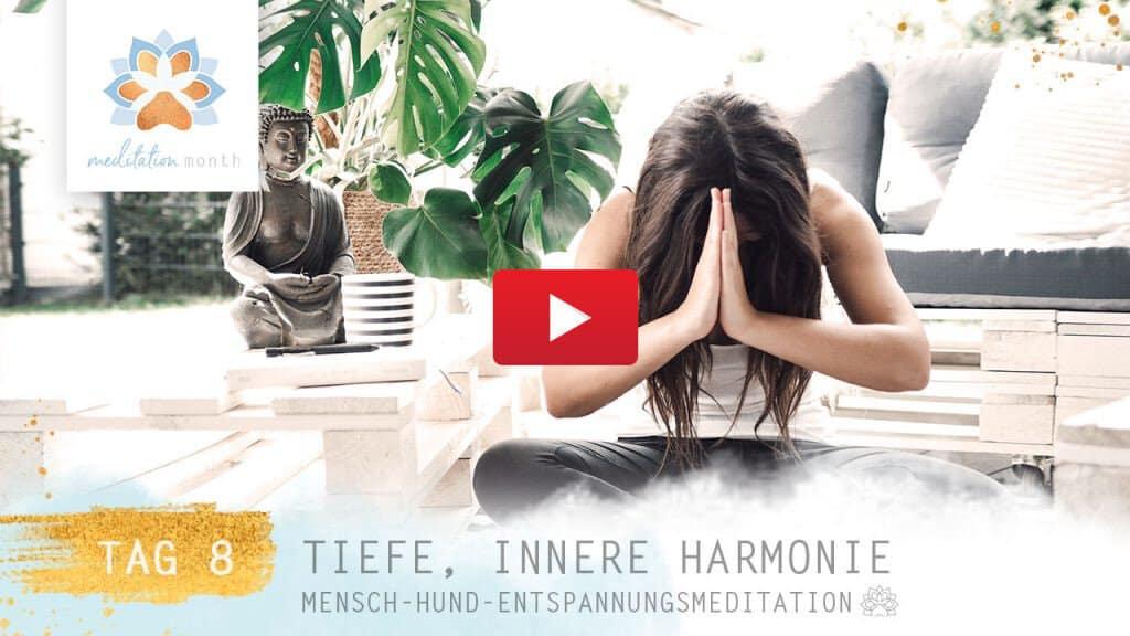 Innere Harmonie – Pawsitive Life Coaching
