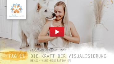 Visualisierung – Pawsitive Life Coaching