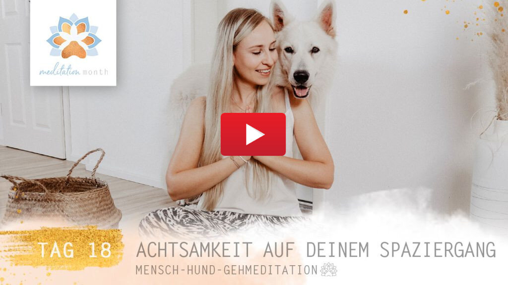 Achtsamkeit – Pawsitive Life Coaching