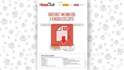 Download:8 Rezepte für Hundekekse